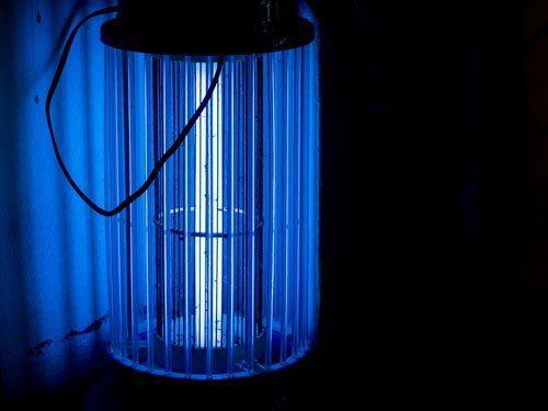 điện năng tiêu thụ của đèn bắt muỗi